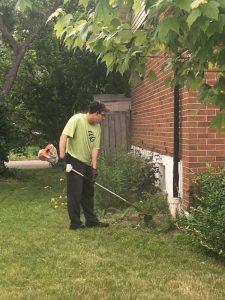 Green Grass Guys weed whacking